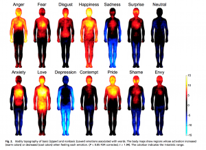 The Physiological Experience of Emotions